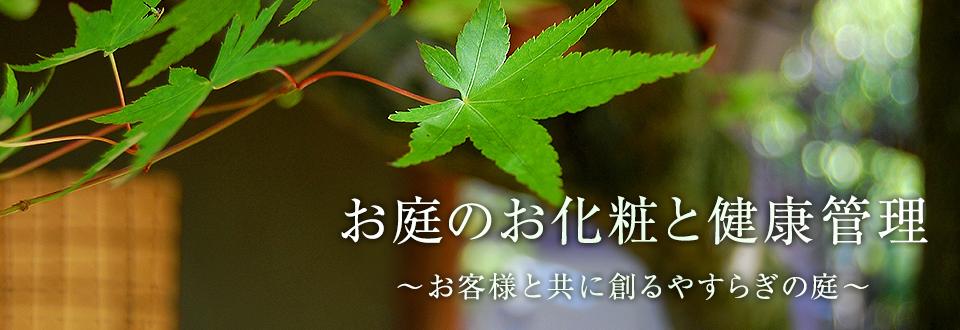 造園工事・庭木剪定・植栽・庭園管理などお庭のことなら神奈川県藤沢市の有限会社かやの木産業